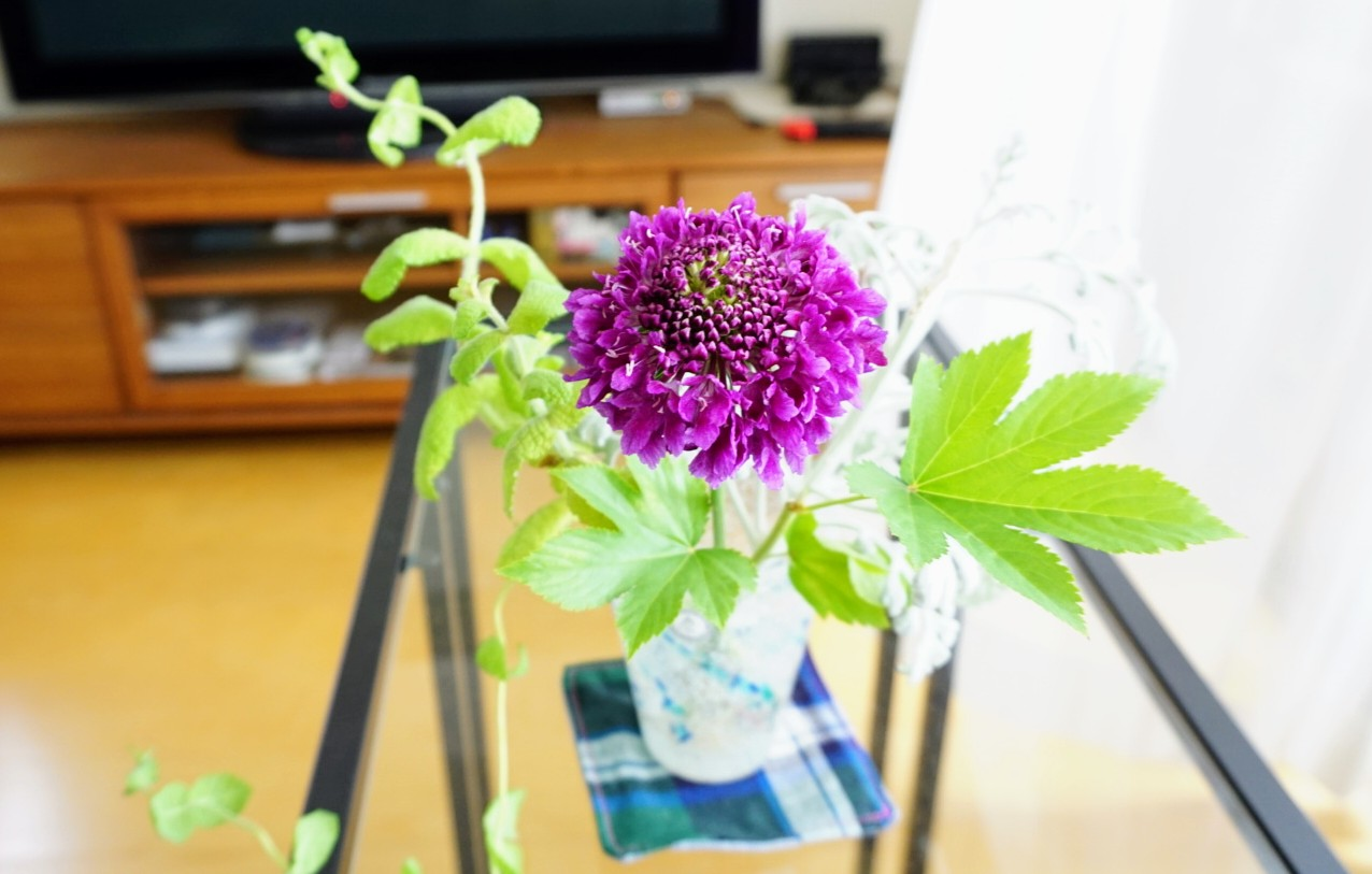 長持ち 切り花